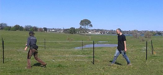 Fence up! 10m Diameter, Waratahs, 5 Wire,