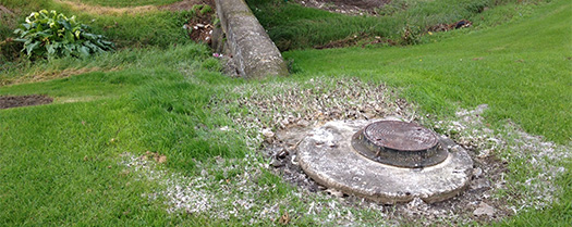 Exploded manholes (reported to Watercare). This is the stream closest to my house. How did I not see these things before!
