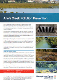 Anns Creek Pollution Prevention