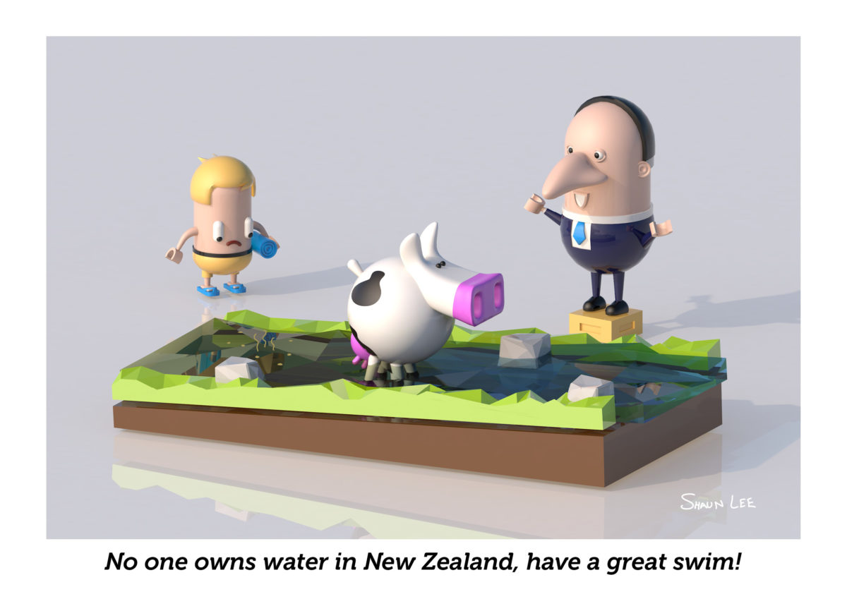 No one owns water in New Zealand, have a great swim!