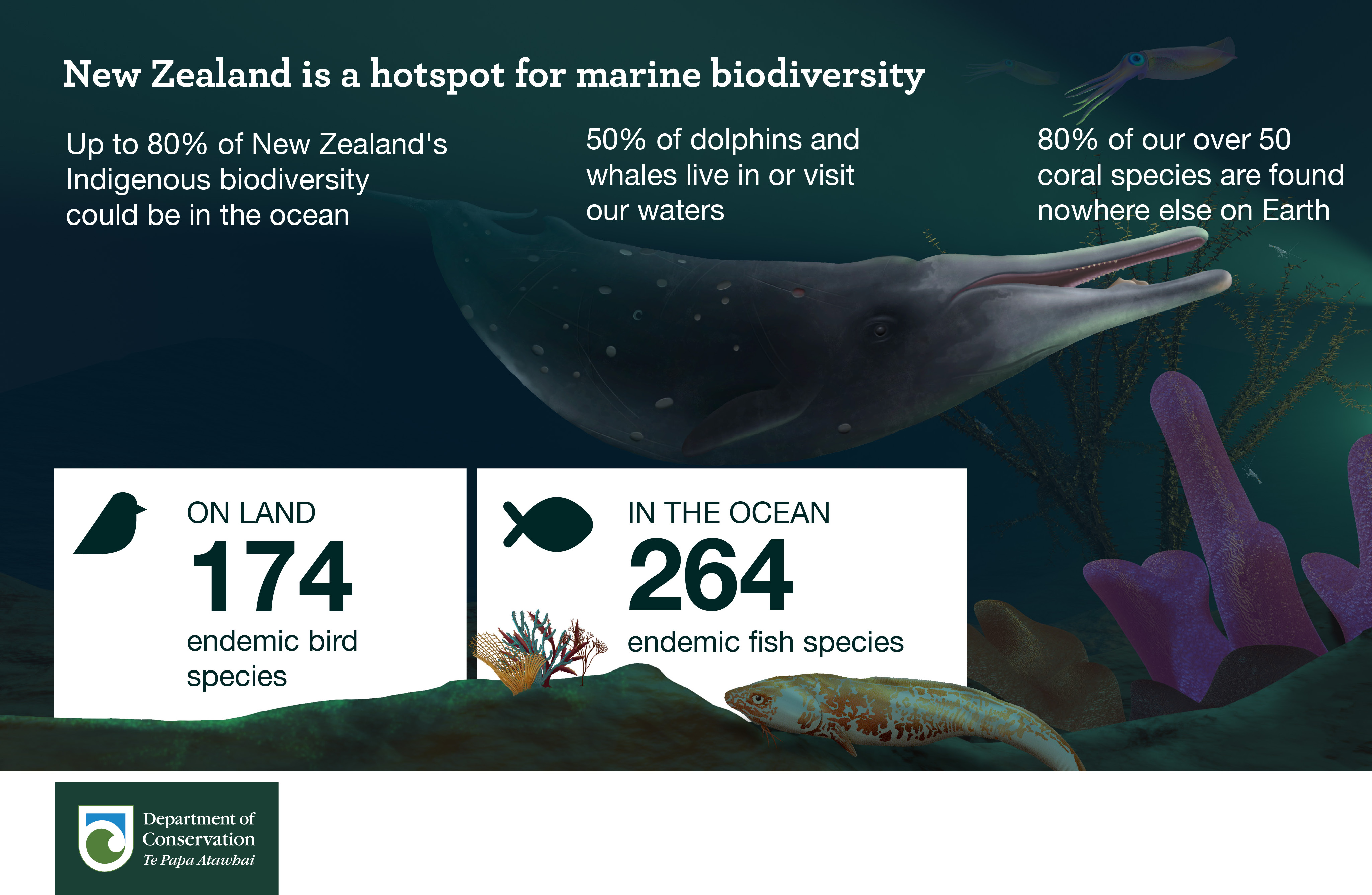 New Zealand is a hotspot for biodiversity